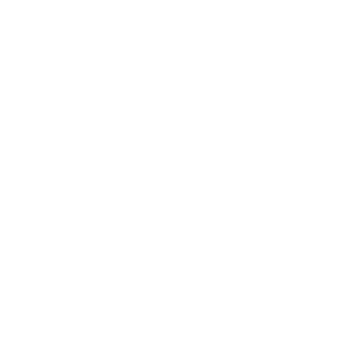 wordpress service icon
