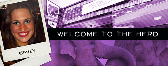Horton Group adds Public Relations specialist Fordice